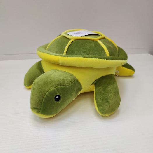 Черепаха: букеты цветов на заказ Flowwow