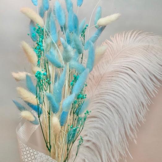 Лагурус голубой с пером