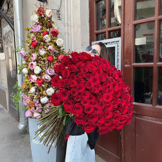 Метровые розы 101