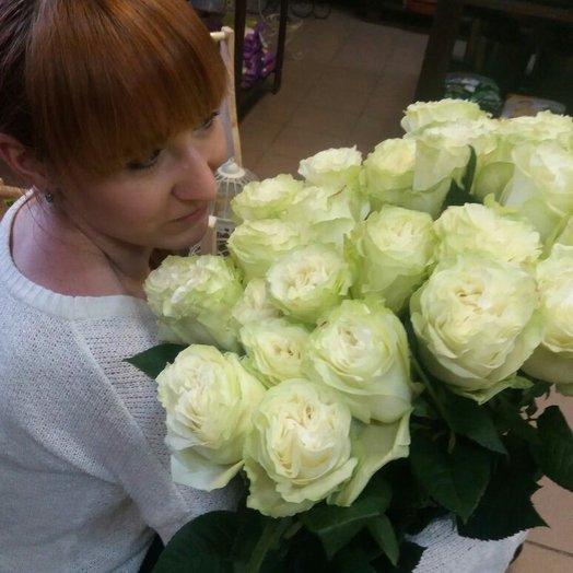 белая роза,25