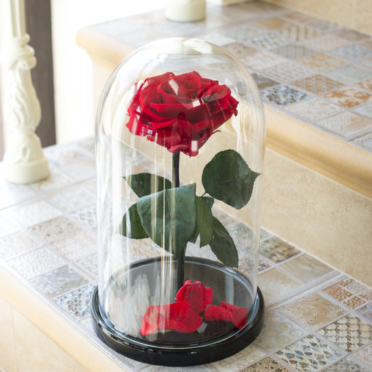 Stabilized rose in the flask: flowers to order Flowwow