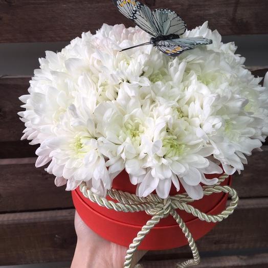 Пушистичка: букеты цветов на заказ Flowwow