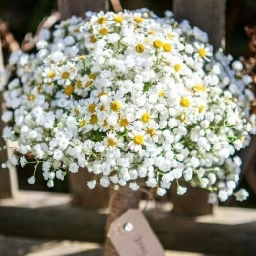 Первой учительнице: букеты цветов на заказ Flowwow