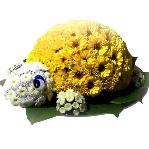 """Игрушка из цветов """"Черепашка"""": букеты цветов на заказ Flowwow"""