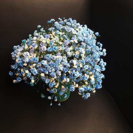 Синяя гипсофила: букеты цветов на заказ Flowwow