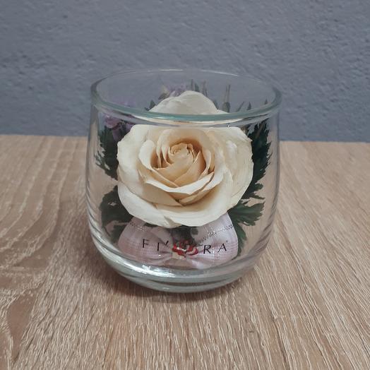 Роза айвори в мини стакане