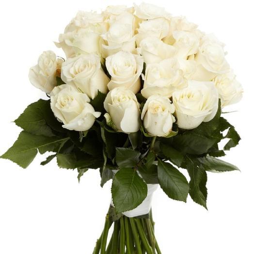 19 best quality white roses