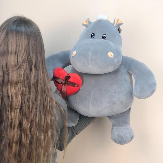 Влюбленный бегемот