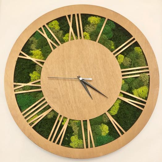 Деревянные Часы со мхом