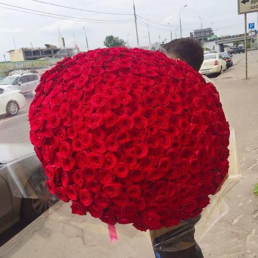 301 Красная Big Beauty