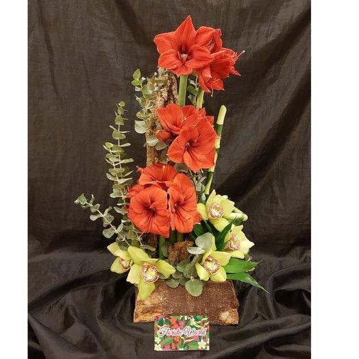 Амариллис с Орхидеей: букеты цветов на заказ Flowwow