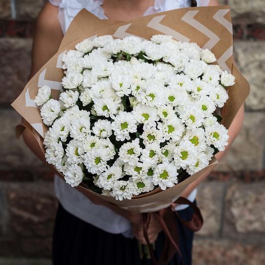 25 Хризантем: букеты цветов на заказ Flowwow