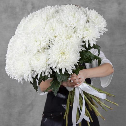 Букет из 15 белых хризантем: букеты цветов на заказ Flowwow