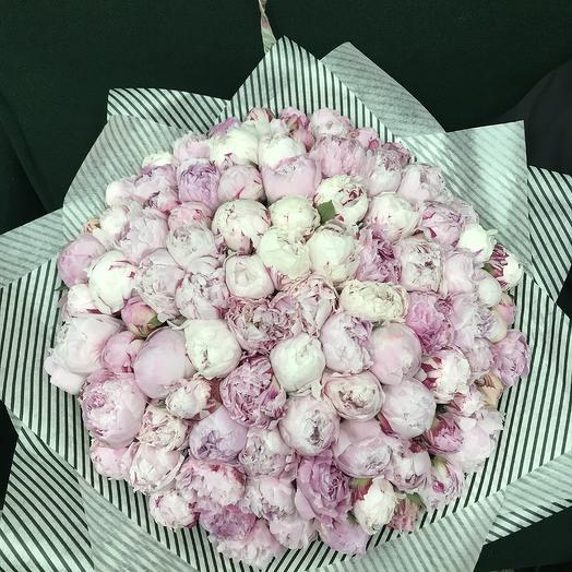 Пионы Сара Бернар: букеты цветов на заказ Flowwow