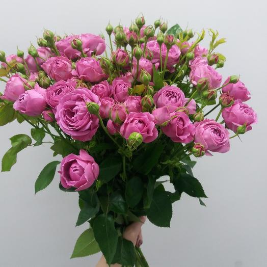 Букет_93: букеты цветов на заказ Flowwow