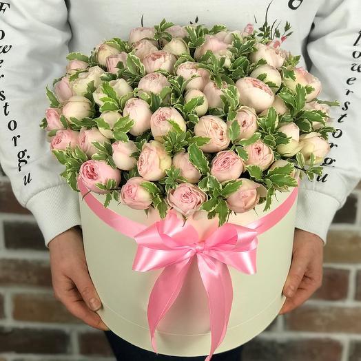 Коробки с цветами. Пионовидная роза Мэнсфилд с питтоспорумом . N655