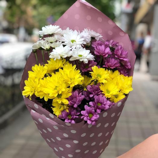 Микс хризантемы