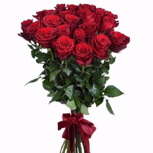 Розы премиального сорта Экспловер высотой 90см