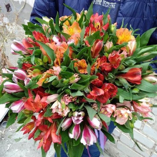 Букет из 23 разноцветных альстромерий: букеты цветов на заказ Flowwow