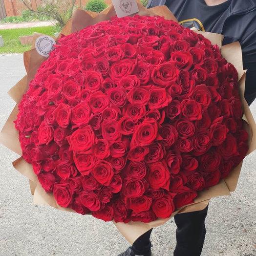 201 роза премиум: букеты цветов на заказ Flowwow
