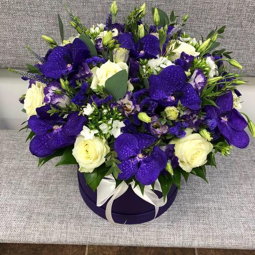 Северное сияние : букеты цветов на заказ Flowwow
