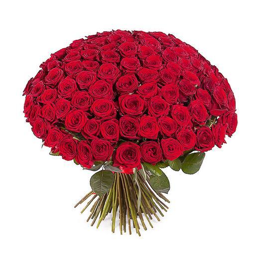 101 красная роза 40 см: букеты цветов на заказ Flowwow