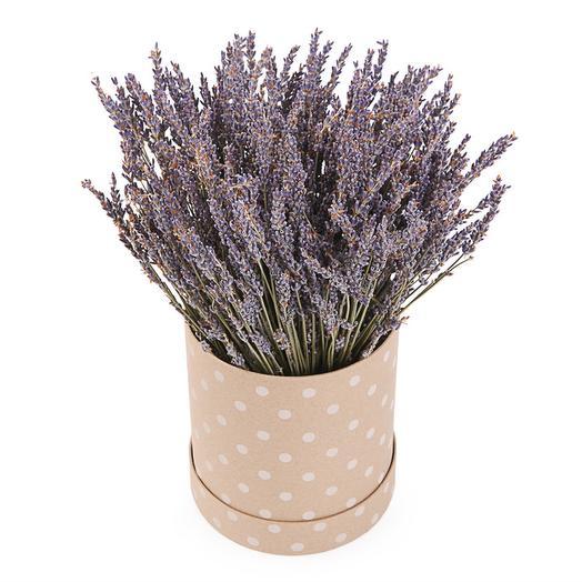 Букет из лаванды Аромат Прованса в шляпной коробке: букеты цветов на заказ Flowwow