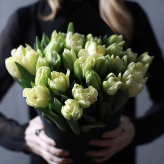 49 Пионовидных Тюльпанов: букеты цветов на заказ Flowwow