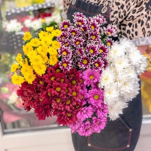 Букет из 5 хризантем Цвет можно выбрать любой: букеты цветов на заказ Flowwow