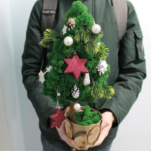 Eco-mossy tree: flowers to order Flowwow