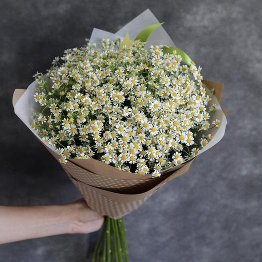 Большой букет из Ромашек (M): букеты цветов на заказ Flowwow