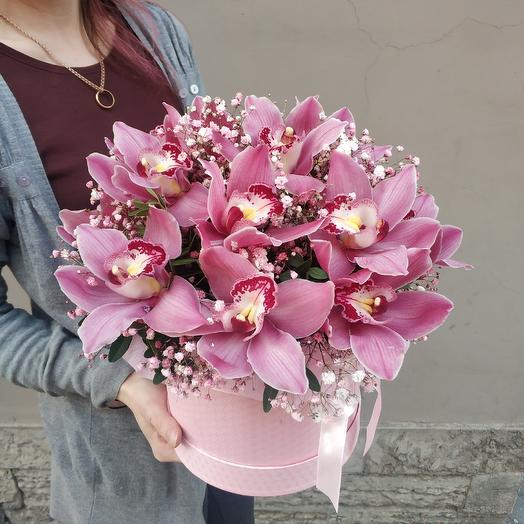 Коробка орхидей: букеты цветов на заказ Flowwow
