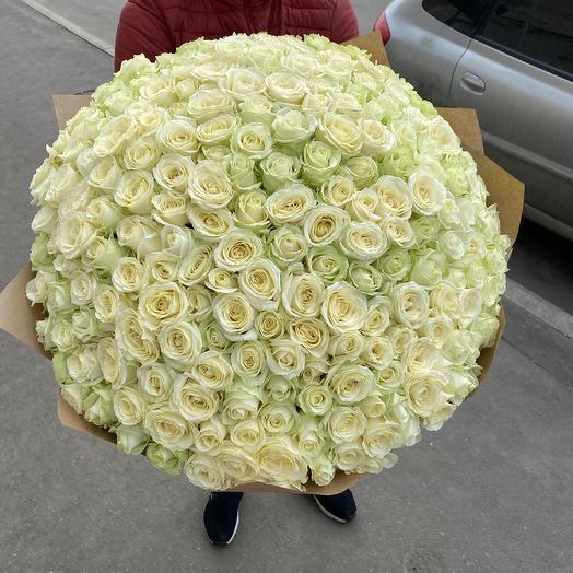 Букет 301 шт Роза: букеты цветов на заказ Flowwow