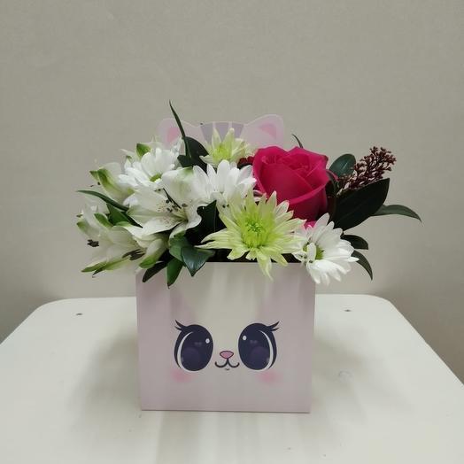 Цветы в коробке «котёнок»