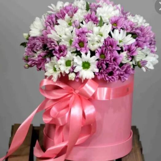 Ромашковые хризантемы  в шляпной коробке