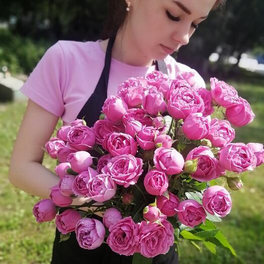 Мисти Баблс пионовидная роза