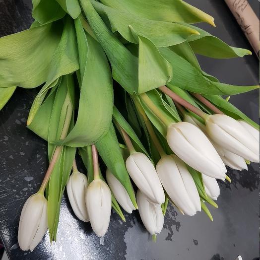 Букет из 17 белых тюльпанов: букеты цветов на заказ Flowwow