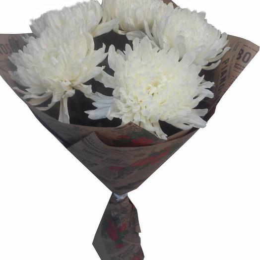5 крупных хризантем: букеты цветов на заказ Flowwow