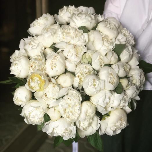 Ароматные пионы Дюшес / 51 шт: букеты цветов на заказ Flowwow