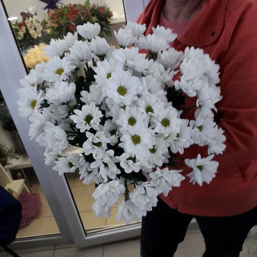 Хризантема 9 шт: букеты цветов на заказ Flowwow