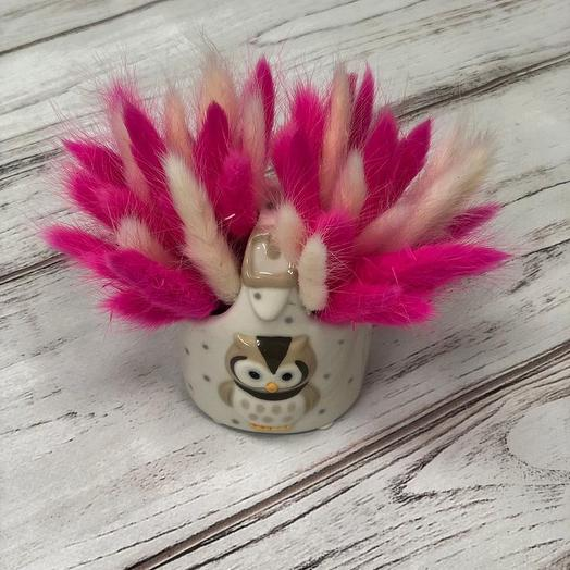 Лагурус в керамическом кашпо: букеты цветов на заказ Flowwow