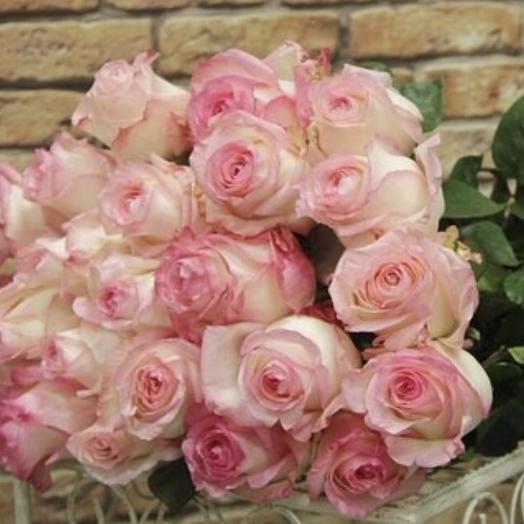 25нежных Роз Премиум: букеты цветов на заказ Flowwow