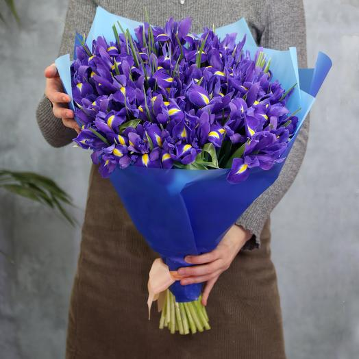 Букет из 51 синего ириса