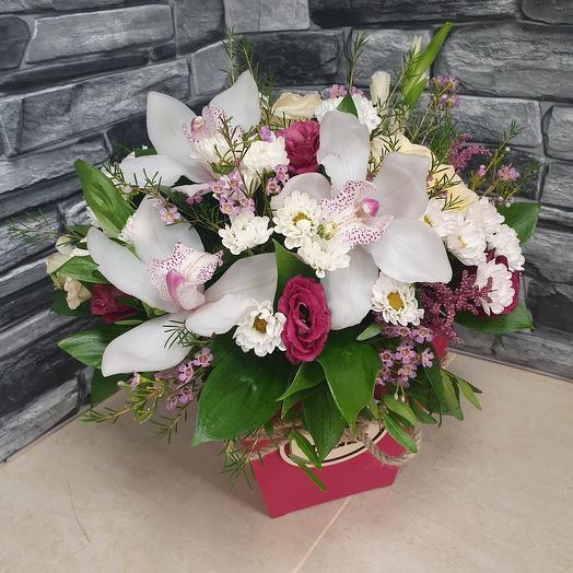 Нежная орхидея в ящике бордо