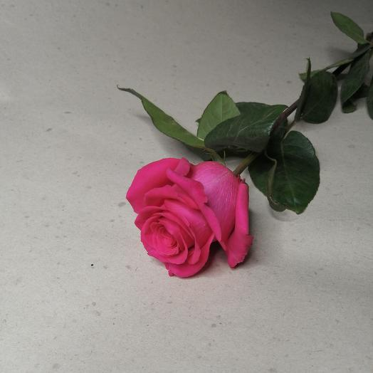 Готча, эквадорская роза 70см