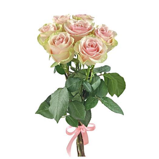 7 розовых роз FRUTTETO