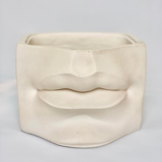 Кашпо губы