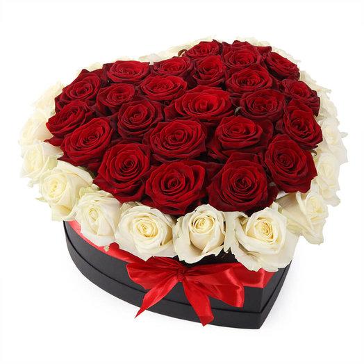 51 красно-белая роза в форме сердца