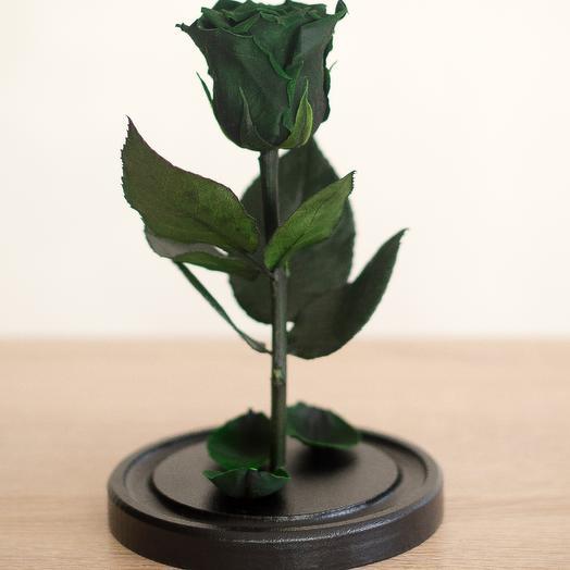 Зелёная роза в колбе Мини Плюс