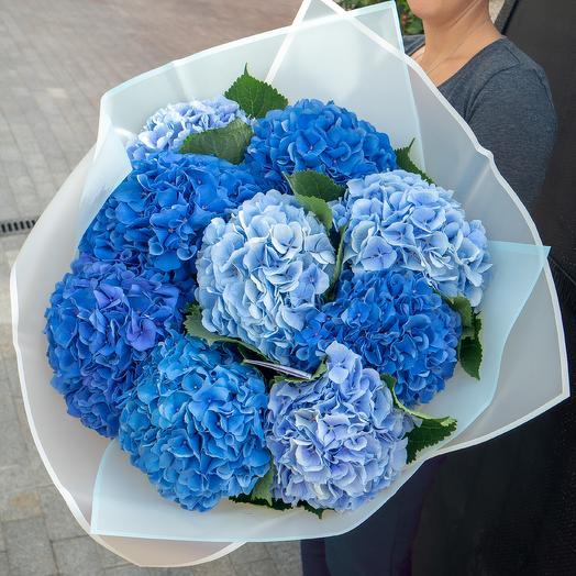 Букет из 9 гортензий: букеты цветов на заказ Flowwow